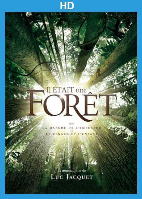 NetPlus VOD - Il était une forêt